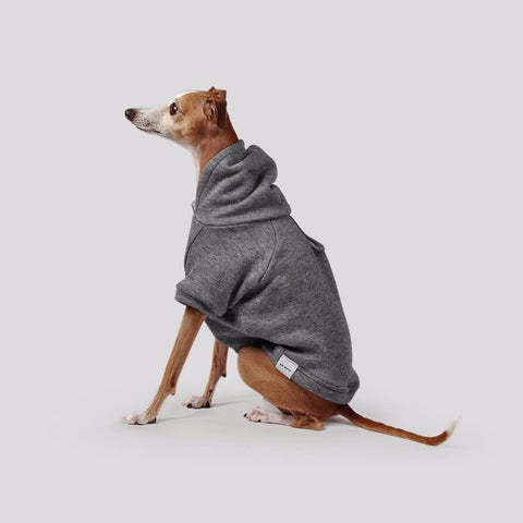Max Bone Francois Dog Jumper