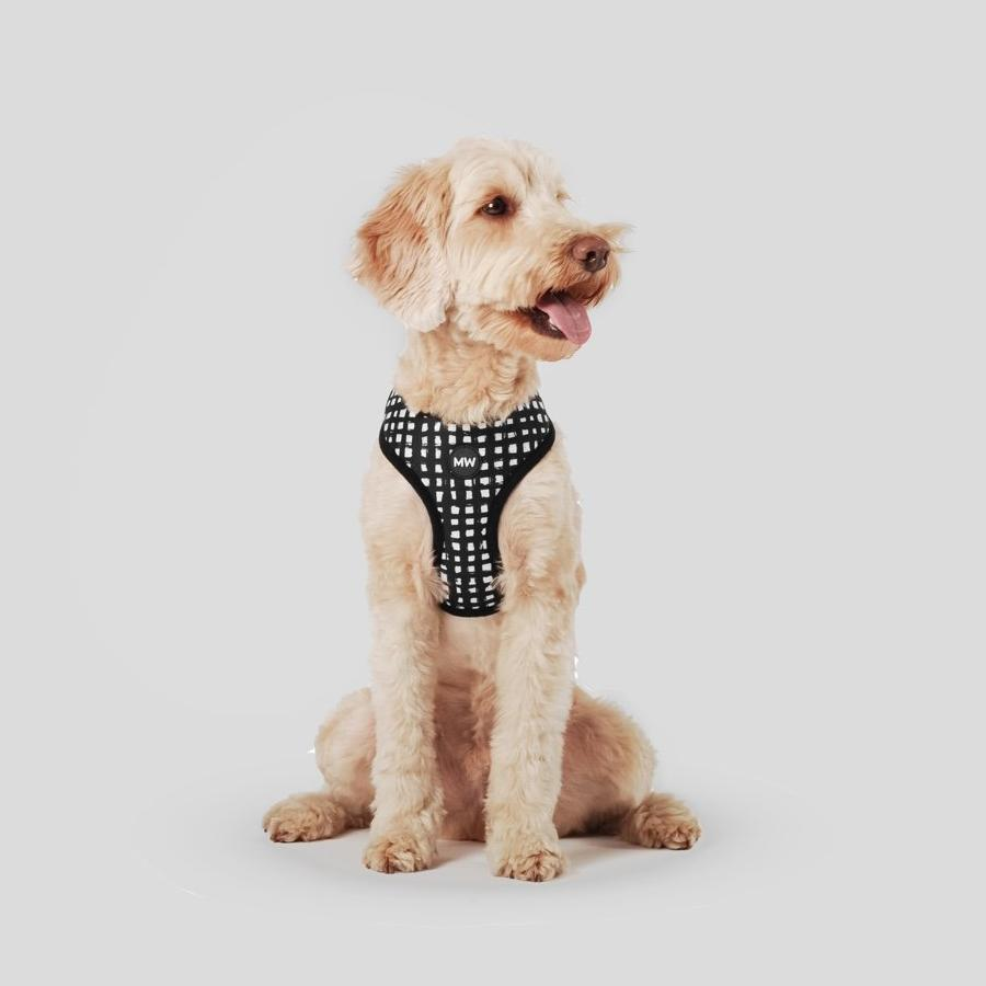 patterned dog harness