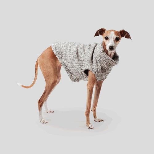 light grey cotton designer dog turtleneck