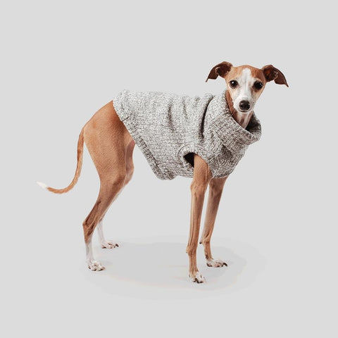 Max Bone Mickey Appliqué Dog Jumper