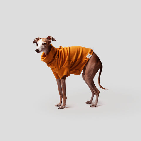 Max Bone Curly Knit Dog Jumper