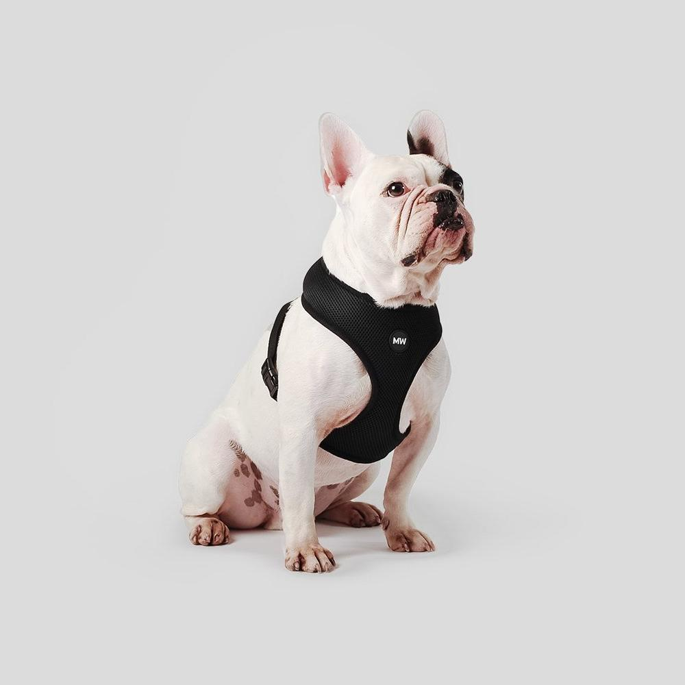 best dog harness for french bulldogs