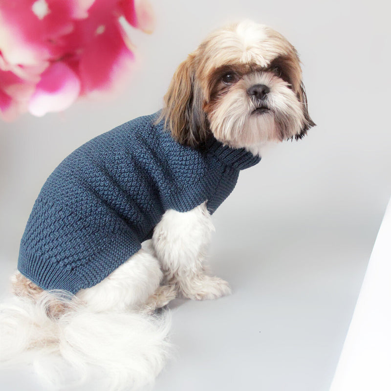 blue wool dog jumper