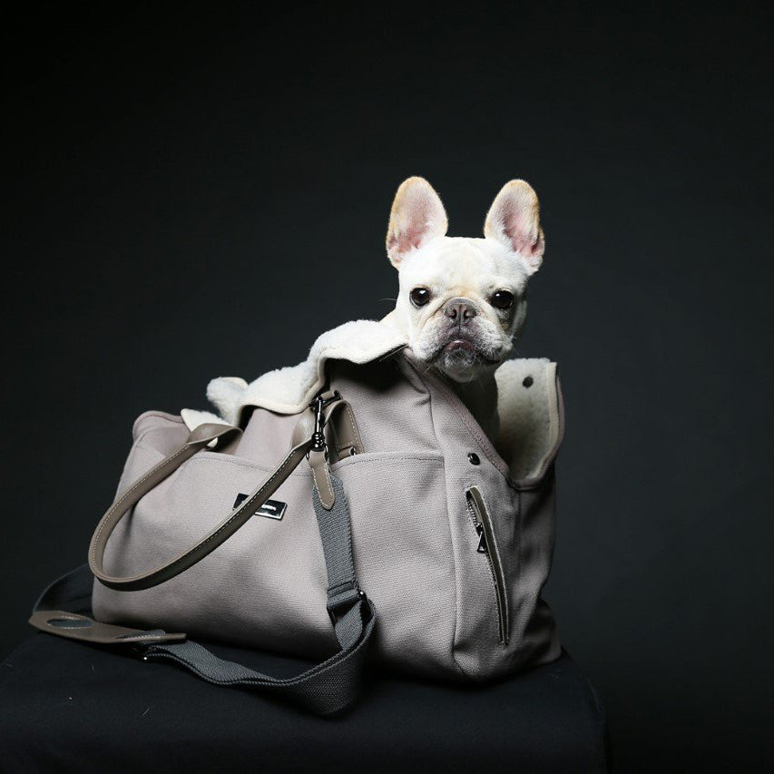 french bulldog carrier