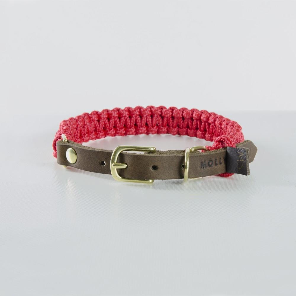 Molly & Stitch Touch of Leather Dog Collar