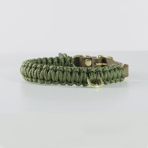 green rope dog collar