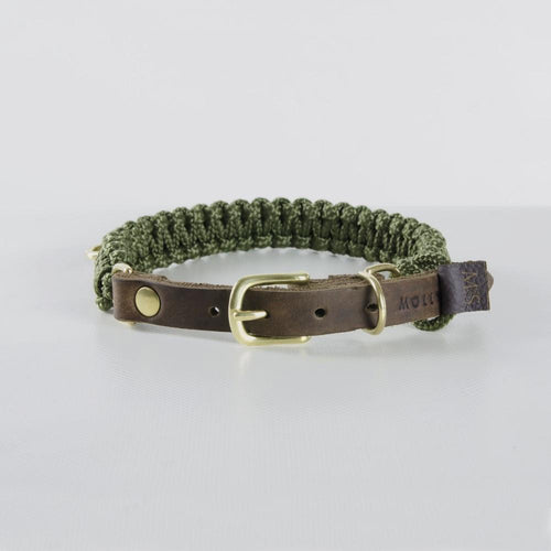 Molly & Stitch Touch of Leather Dog Collar - Military Green