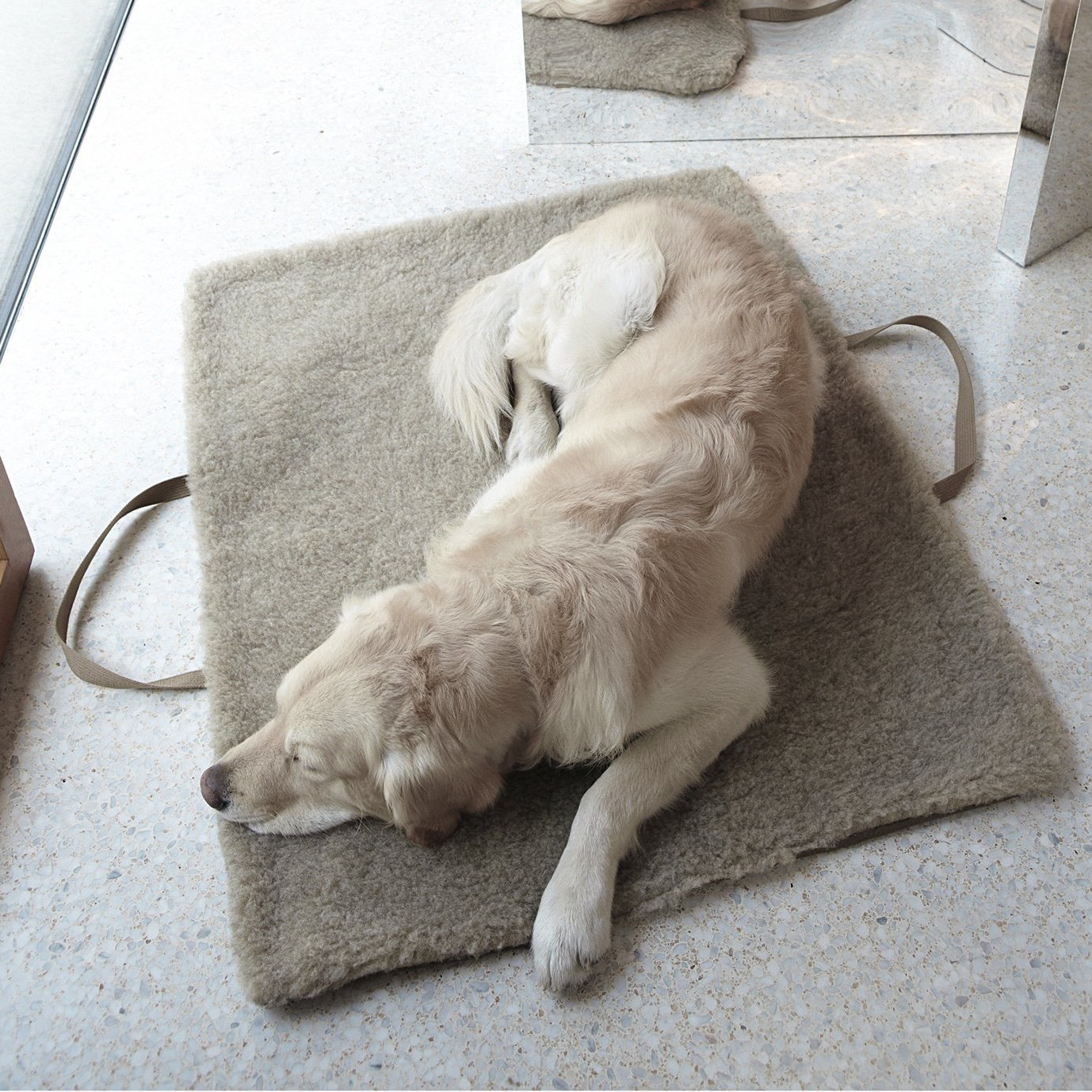 waterproof dog travel bed
