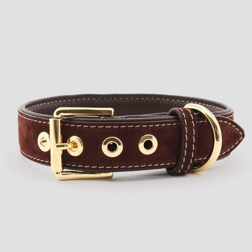 William Walker Leather Dog Collar uk