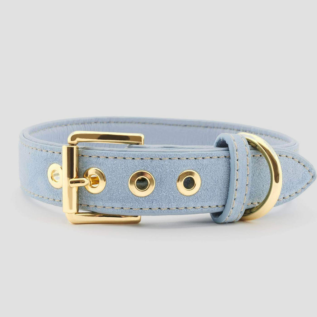 William Walker Leather Dog Collar - Sky