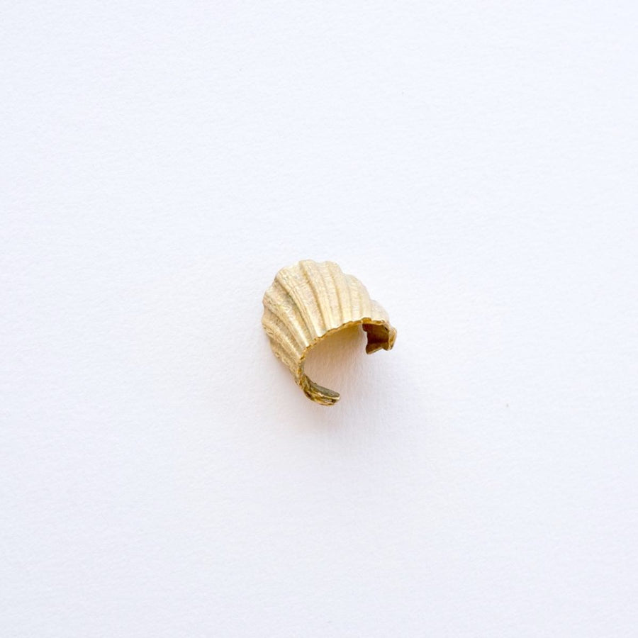 Shell Fragment Ring