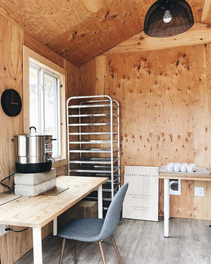 Nordic Cabin- Cedarwood, pine, roasted chestnuts