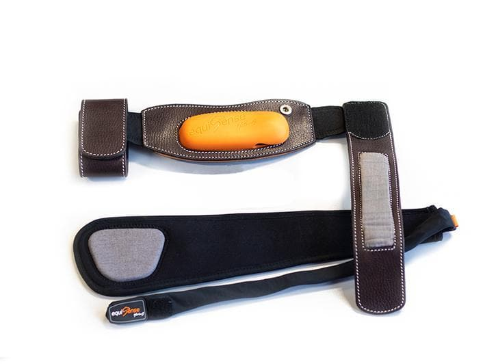 Equisense Motion S attachment & electrode strap