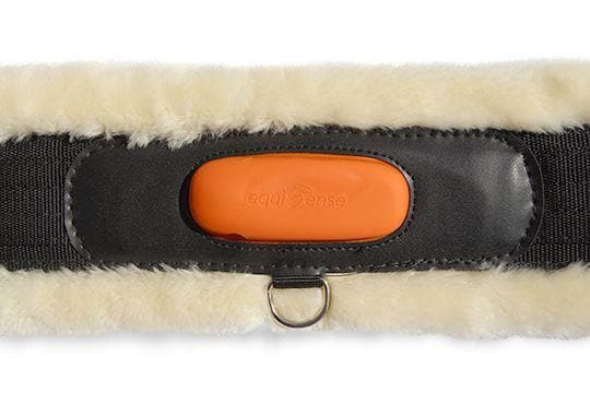 Sheepskin Girth by Equisense & Kentucky