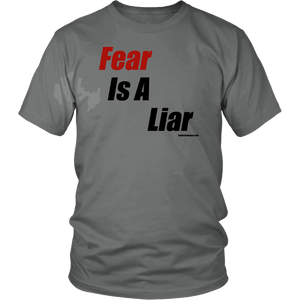 Fear is a Liar, Bold T-shirt District Unisex Shirt Grey S