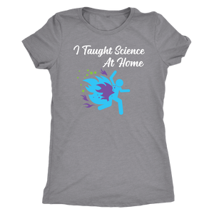 I Taught Science at Home Funny Womens T-Shirt T-shirt Next Level Womens Triblend Heather Grey S