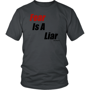 Fear is a Liar, Bold T-shirt District Unisex Shirt Charcoal S
