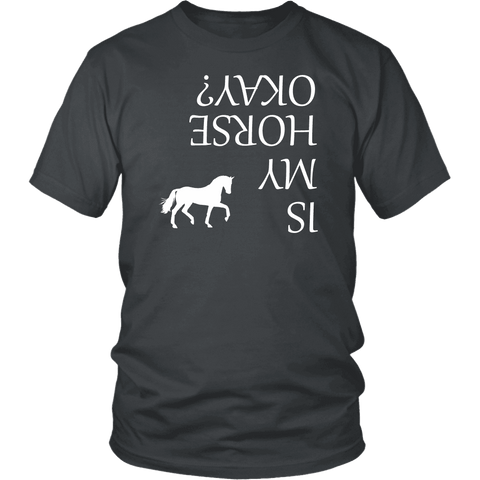 Image of Is My Horse Okay? | Fun Shirts T-shirt District Unisex Shirt Charcoal S