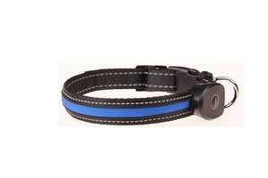 USB Rechargeable LED Light Dog Collar