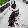 Thin Blue Line Pet Bandana Pet Bandana