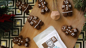 Chocolate Protein Gingerbread Cookies