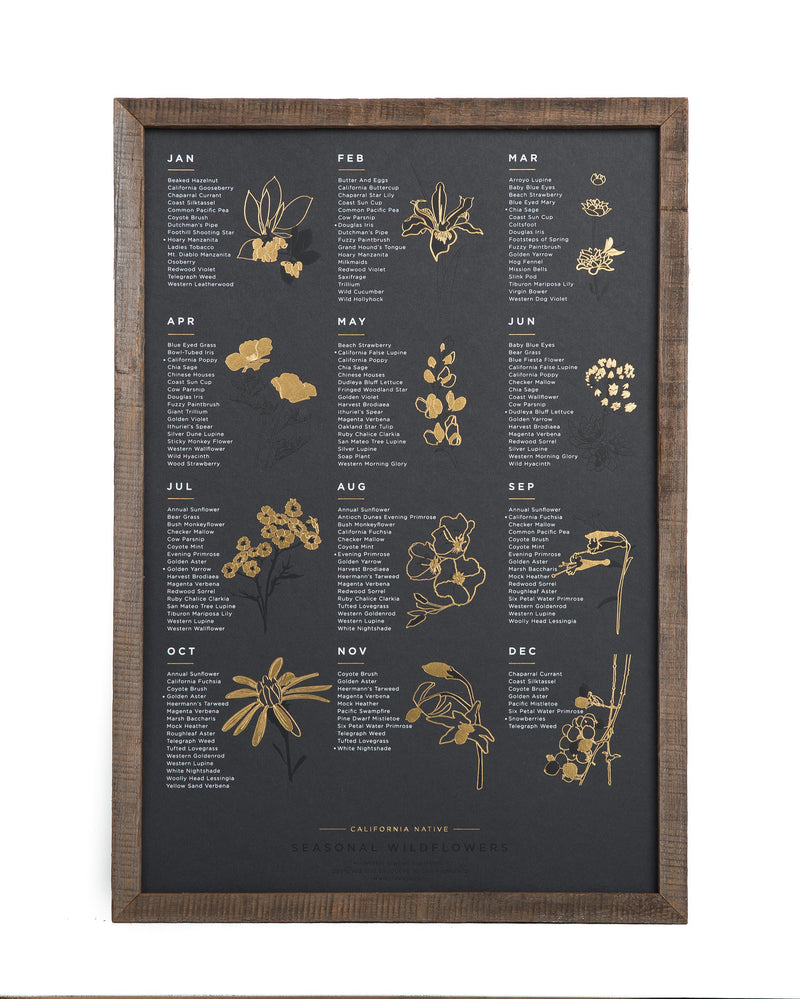Native Wildflower Seasonal Poster