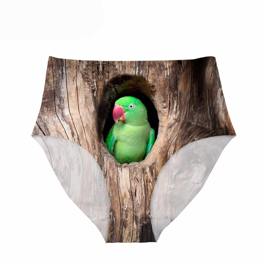 Underwear - Woman's High Waisted Panties Lovebird or Owl Design