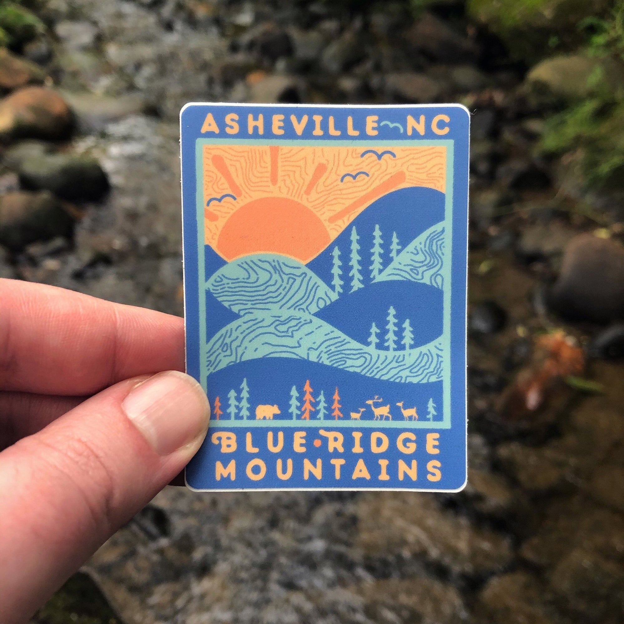 Day Ridge (Asheville) - menottees