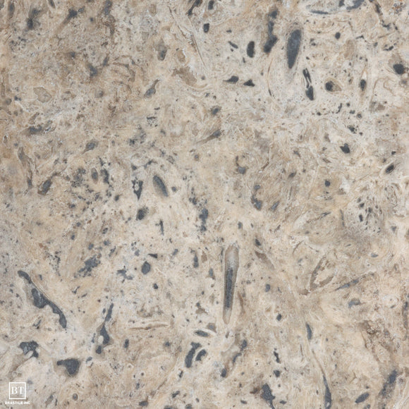 Euro Silver Classic Travertine