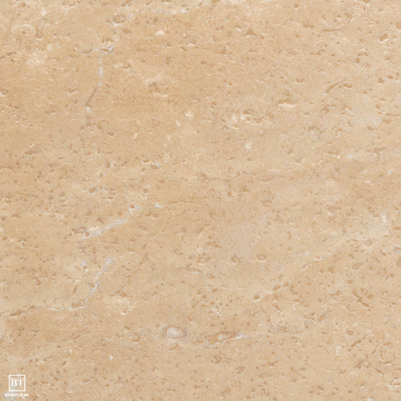Reale Shellstone Travertine Paver