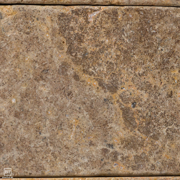 Travertine Shell