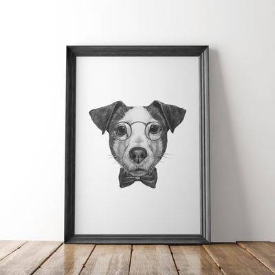 Affiche Jack Russell