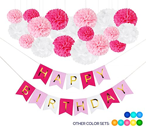 19 DIY Pink Birthday Party Decorations 18 Tissue Paper Flower Pom Poms 1 Happy