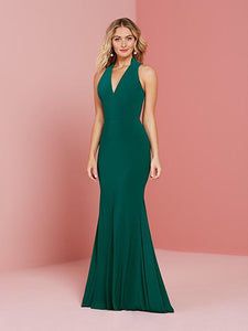 22015 Celebration Gown