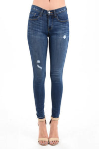 Destroyed Mid-Rise Skinny Jeans Plus