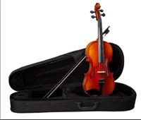 Becker 2000B Polished Golden Brown Viola Outfit