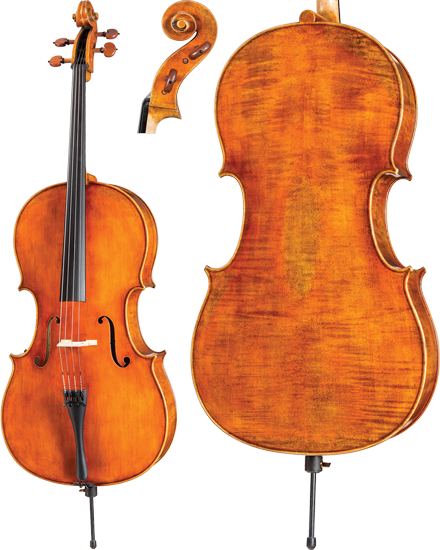 Dragon Model DR20-VC Cello
