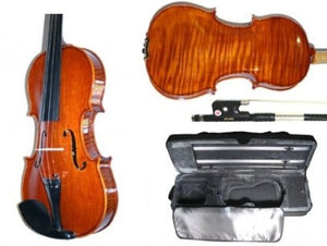 Stentor Elysia Violin Outfit