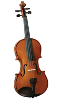 Cervini Advancing Violin Outfit