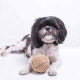 Tyke Eco  Ball - Perfect for Small Dogs, Kittens and Cats!