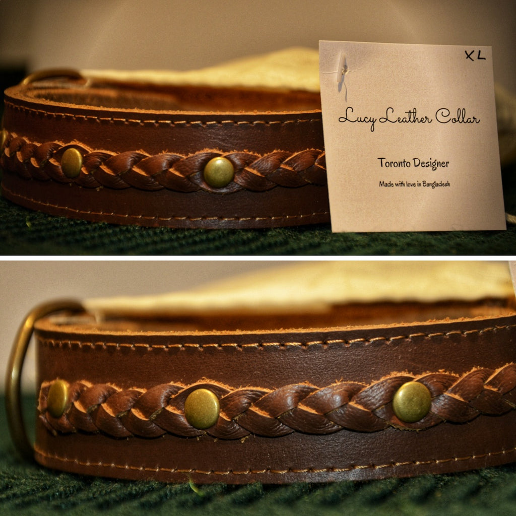 TyPaw Dog Leather Collar | Lucy Series - TyPawCafe
