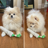 Set of Two (2) Cotton Rope Toys for Dogs, Puppies | Stuffed with Recycled Bottle