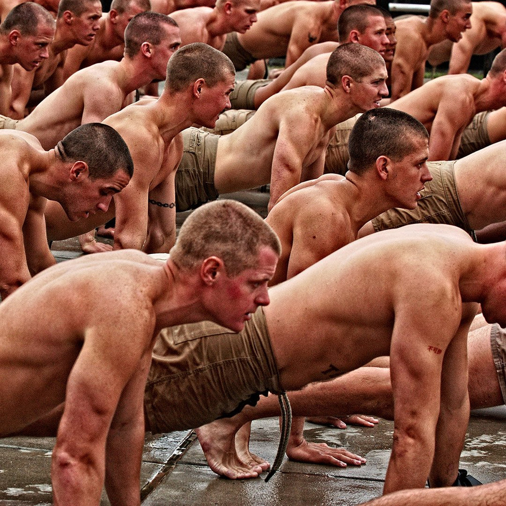 Push Up Training Program