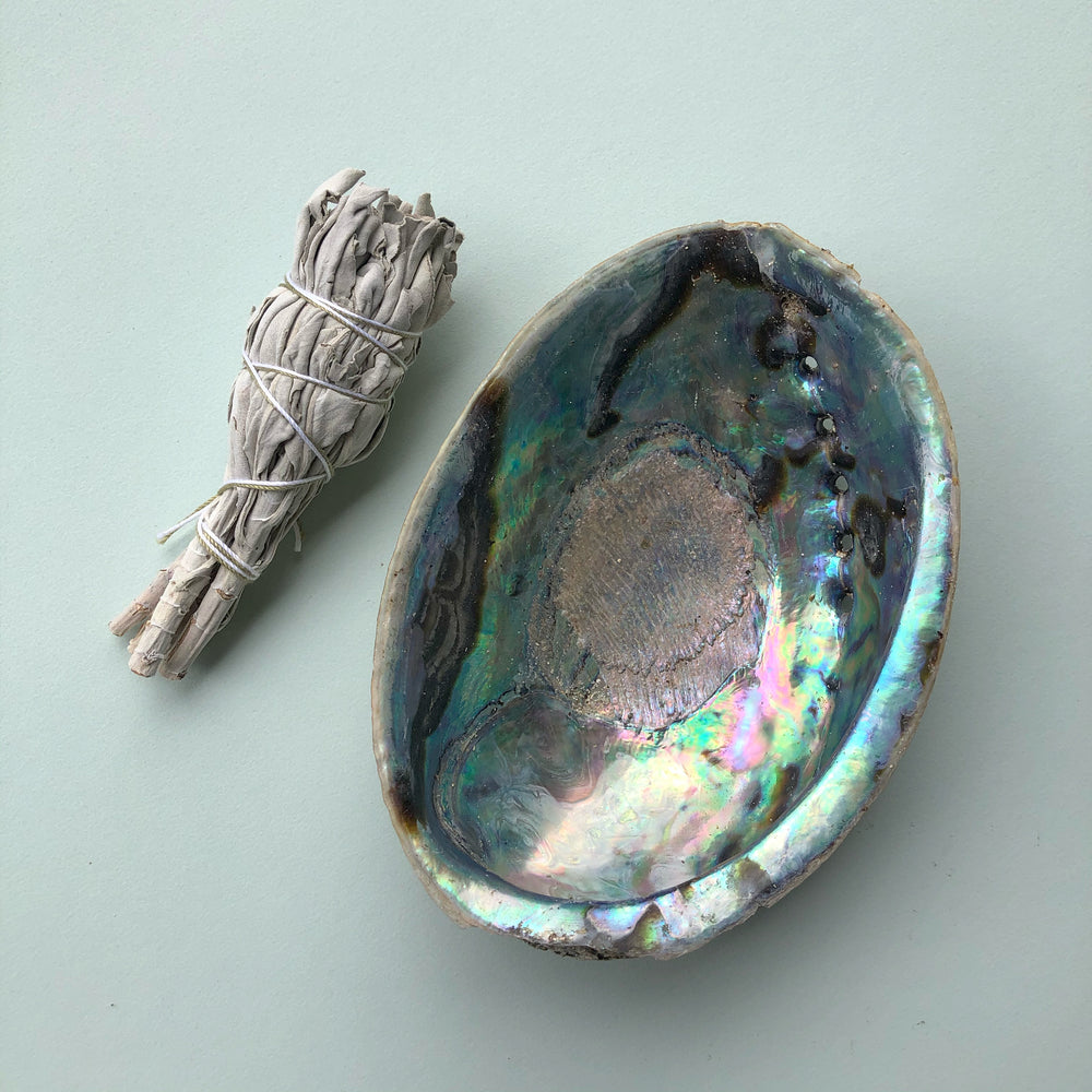 Shell + Smudge Kit - Small