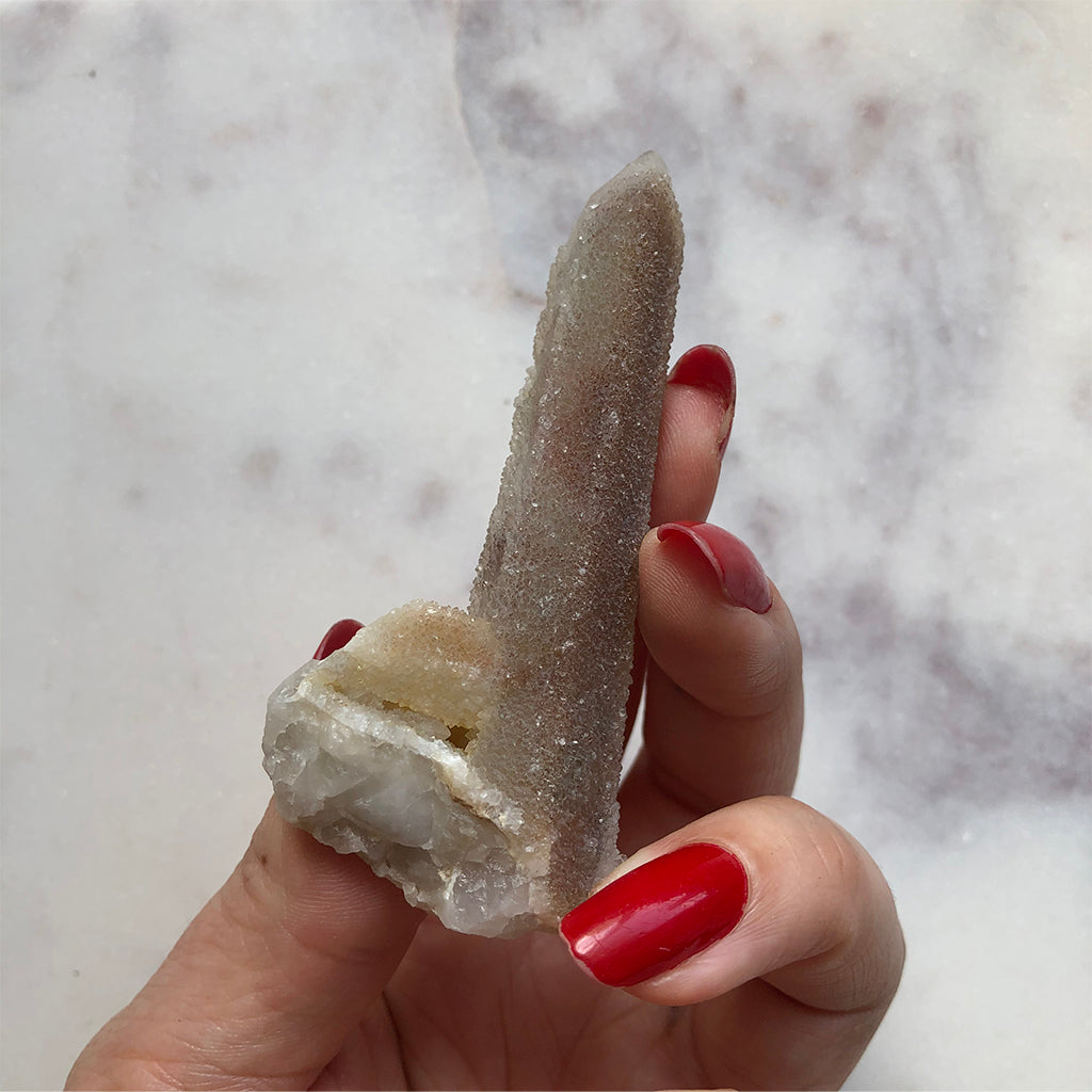 Witches Finger