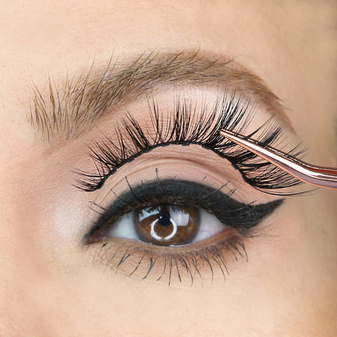 Get the lashes you crave with the ten magnet Sassy Lash from MoxieLash.
