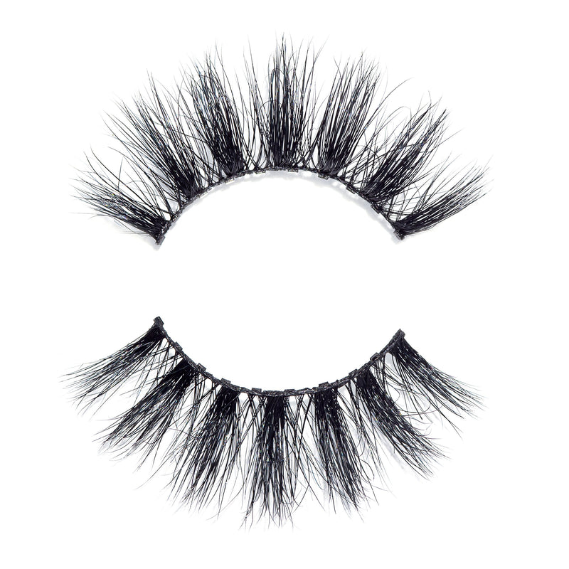 Money Lash - 10 Magnet