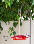 32 Port Hummingbird Feeder