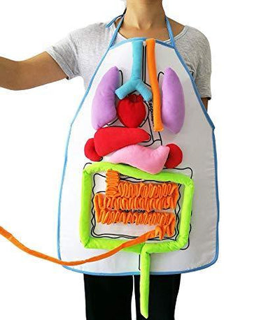 New Anatomy Apron