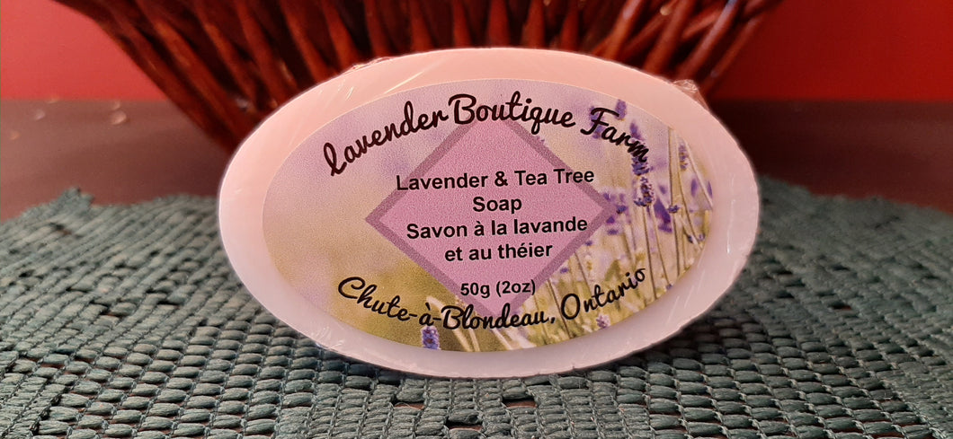 Lavender & Tea Tree soap bar